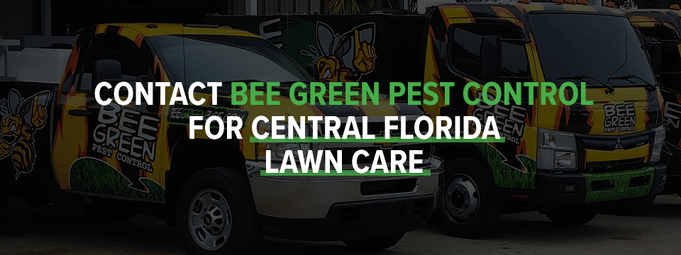 Contact Bee Green Pest Control For Central Florida Lawn Care